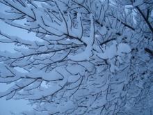 Snow2_4